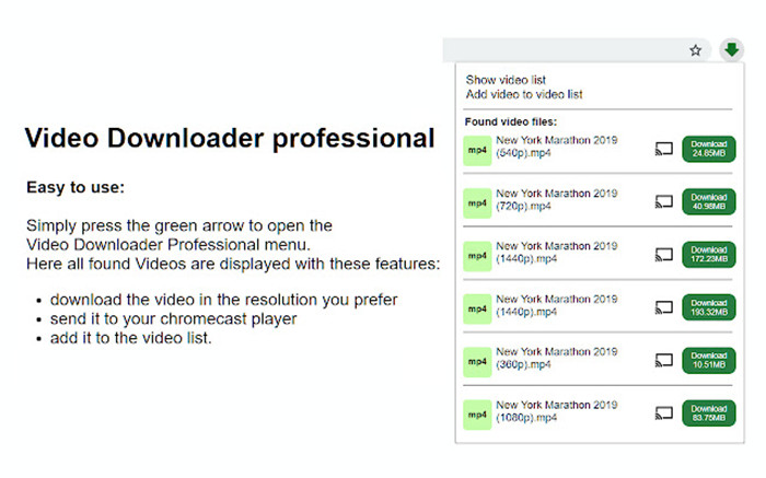 video-downloader-professional